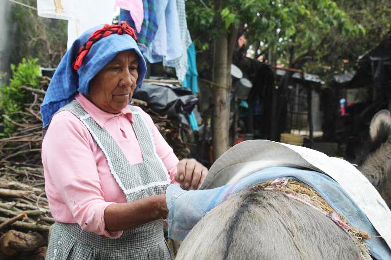 Partería en una comunidad Nahua Las mujeres de San Isidro Buensuceso, Tlaxcala